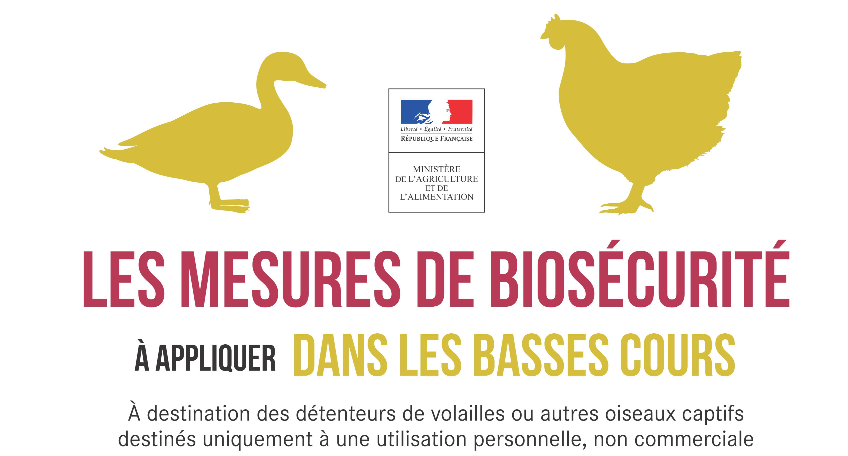 Grippe Aviaire – Mesures de sécurité