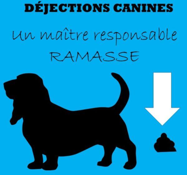 Les déjections canines… un peu de civisme !